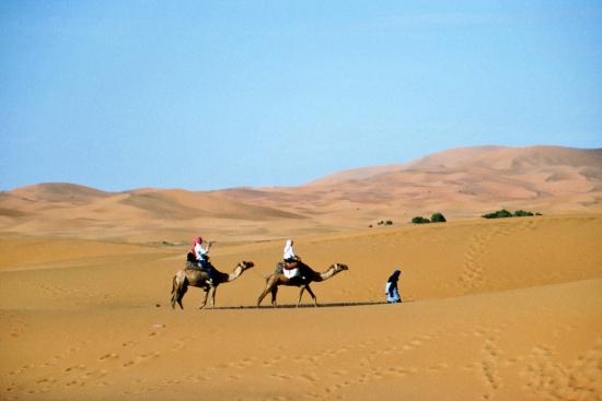 Ziemlich sandig - die Sahara war wieder Ziel meiner Reise