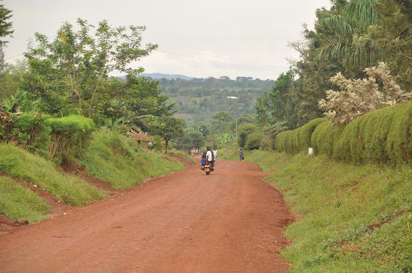Ueber die Nebenstrassen nach Kampala ist wesentlich gesuender, als auf der Hauptstrasse