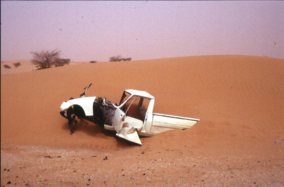 Nicht jeder hat Glück in der Sahara