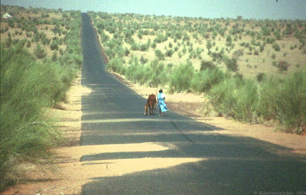 Die Straße der Hoffnung...