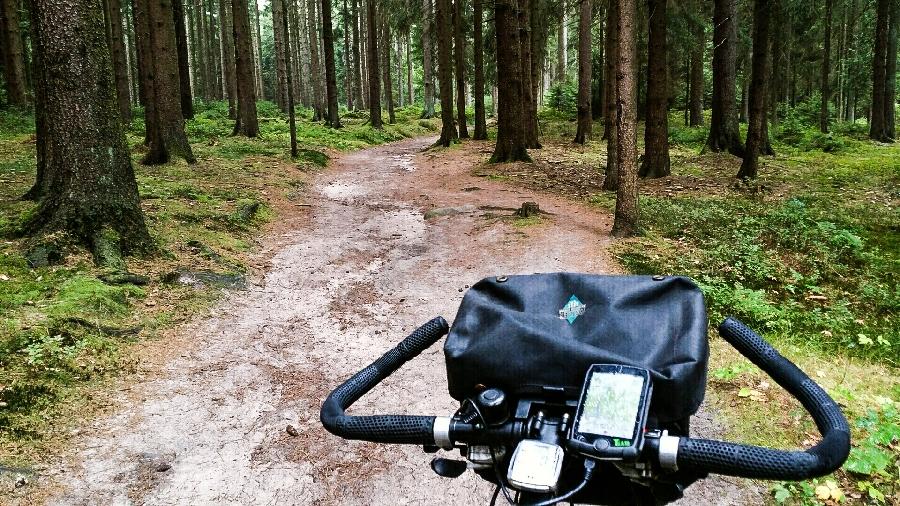 Durch Wald und Heide