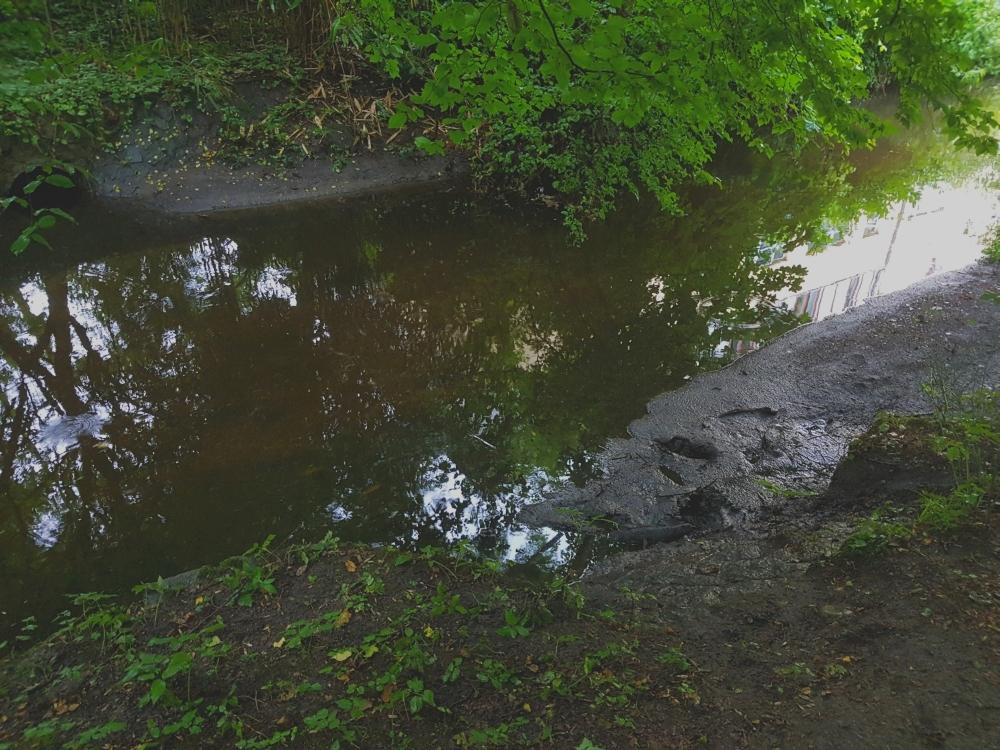 Hier flog ich ins Wasser. Man sieht die Spuren noch, als ich wieder hoch kroch. Eine Katze brachte mich zum Bremsen. Mit entsprechenden Folgen...