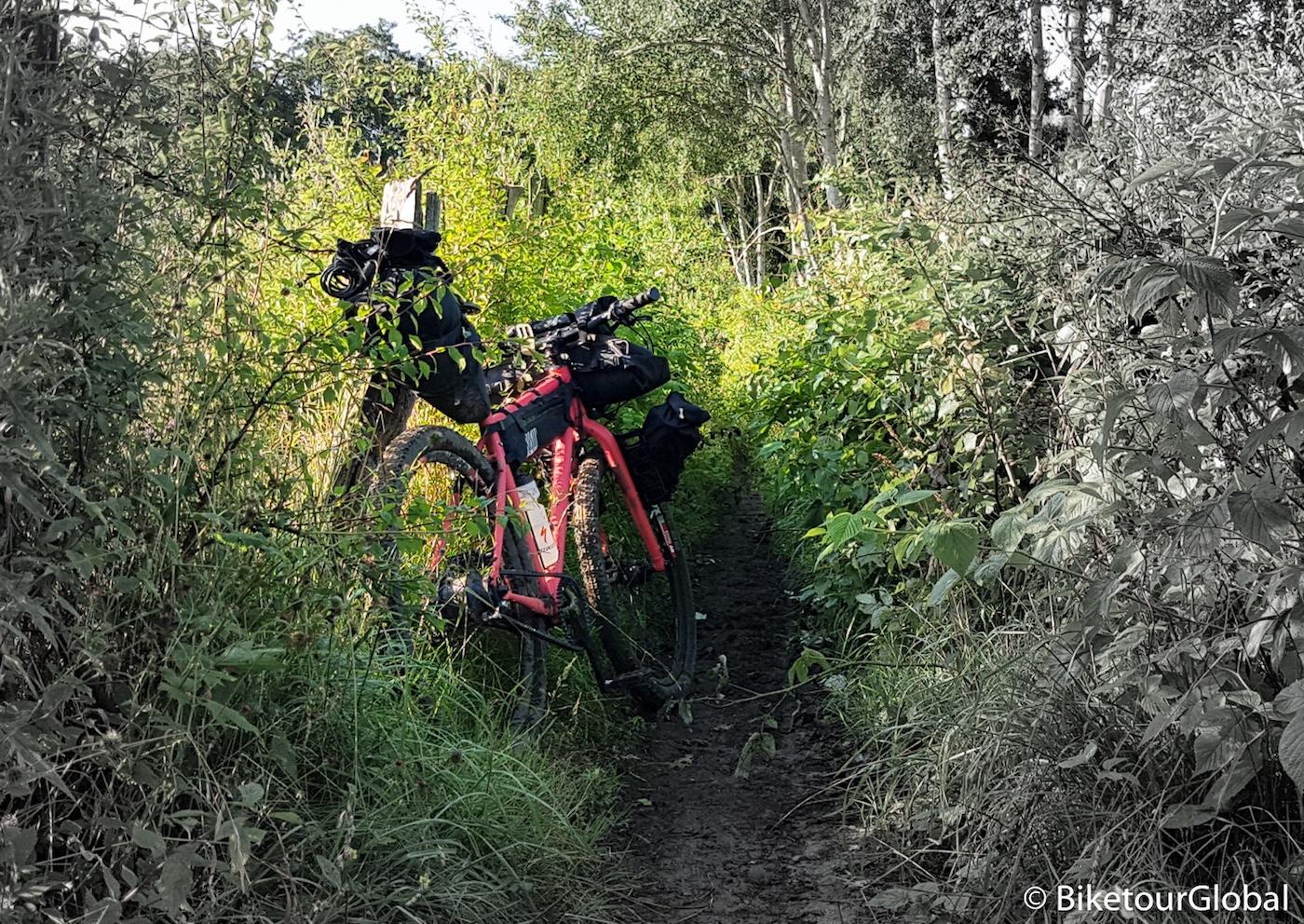 Bikepacking durch das Unterholz
